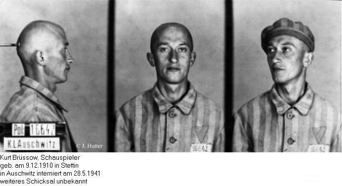 Pink Triangle Prisoner from Auschwitz Concentration Camp: Kurt Brüssow