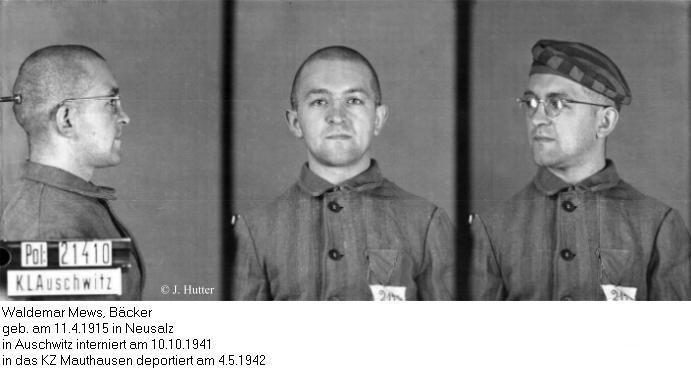 Pink Triangle Prisoner from Auschwitz Concentration Camp: Waldemar Mews