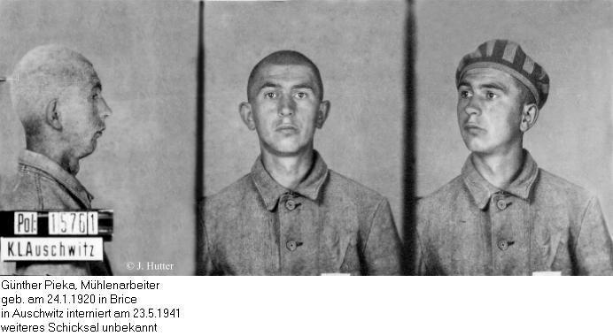 Pink Triangle Prisoner from Auschwitz Concentration Camp: Günter Pieka