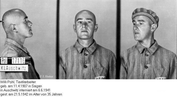 Pink Triangle Prisoner from Auschwitz Concentration Camp: Willi Pohl