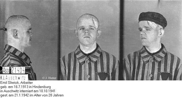 Pink Triangle Prisoner from Auschwitz Concentration Camp: Emil Sliwiok